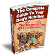 Dog-Food-Dangers.